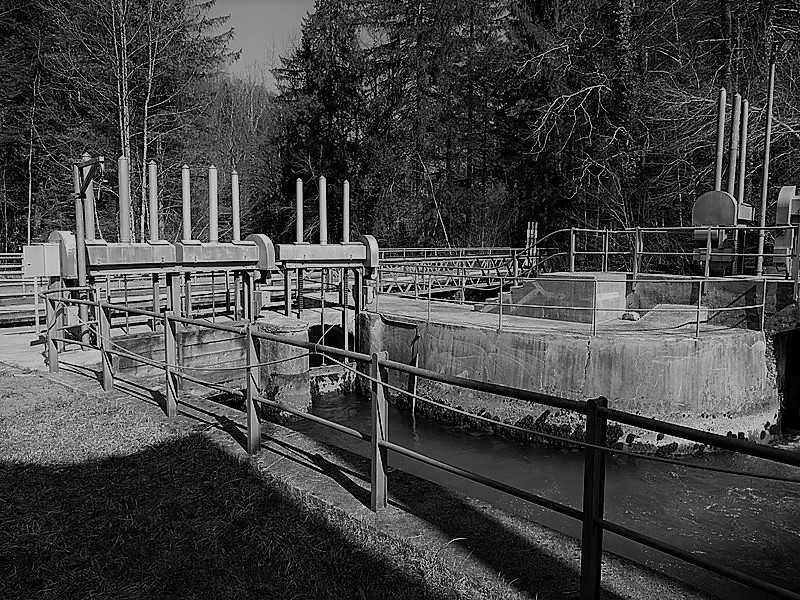 Wasserrechte – Zur Umsetzung des Bundesgerichtsentscheids 145 II 140 (Hammer)